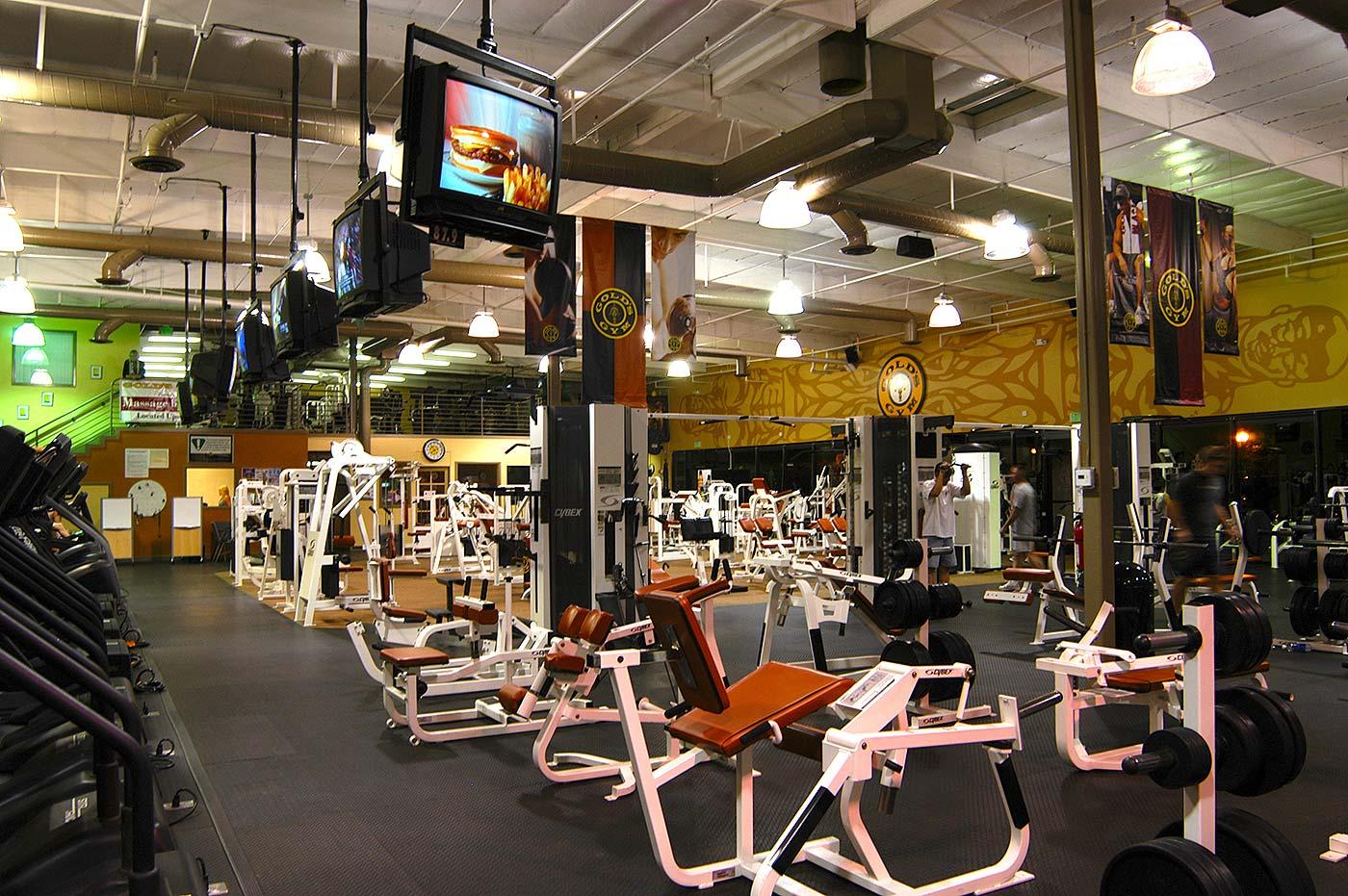 Gold S Gym Renovation Susan Wesley